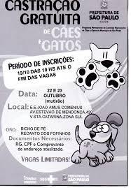 Cães e gatos poderão ser castrados gratuitamente em SP - ANDA ...