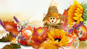 orange halloween hd background scarecrow tag wallpapers jack leaves fall crow halloween firefox