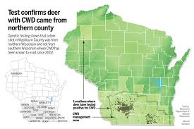 Wisconsin Map With Counties by Deer With Chronic Wasting Disease Was From North Dnr Says