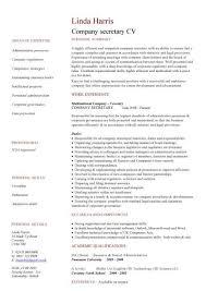 Company Secretary CV