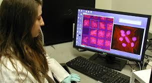 PhD Dissertation Requirements   MIT Department of Biological     MIT Department of Biological Engineering   Massachusetts Institute