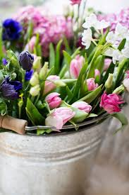 Flowers Plants by 15352 Best Gorgeous Trees Flowers U0026 Plants Images On Pinterest