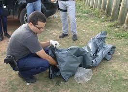Casal encontra ossada humana em reserva de Guarapari | Folha ...