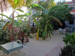 Maria Leticia Apartments (Isla Mujeres, México) - Pensión ... - maria-leticia-apartments