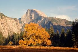Yosemite by How To Have The Best Trip To Yosemite In November