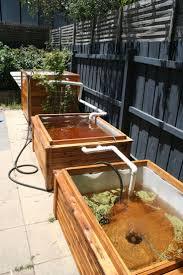 Best  Aquaponics Ideas On Pinterest Aquaponics Diy - Backyard aquaponics system design