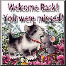 welcome back cat