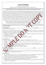 Cv Writing Tips Personal Statement   Resume Maker  Create     Professional CV Writing Services personal statement sample medical school personal statement  good cv best collection