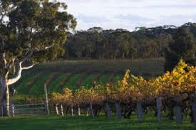 Barossa Valley with Hahndorf Tour