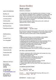 cv template free bbc   Resume cv templates free