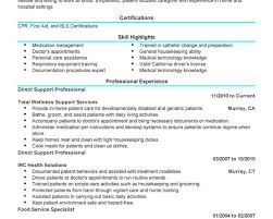 Imagerackus Unique Sample Career Objectives For Resume Easy Resume         Imagerackus Gorgeous Unforgettable Direct Support Professional Resume Examples To Stand With Beautiful Direct Support Professional Resume
