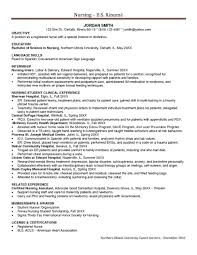 Accounting Resume Examples by Resume Accounting Cv Examples Work At Home Resume Meier Clinic