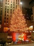 File:Rockefeller Center christmas tree.jpg - Wikipedia, the free ...