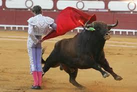 Toro salta al público durante corrida en Mérida