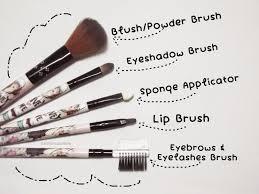 skin encounters start with basics careline brush set 5pcs