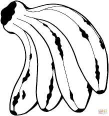 bunch of bananas coloring page free printable coloring pages