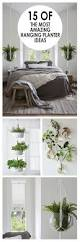 Outdoor Wall Planters by Top 25 Best Hanging Wall Planters Ideas On Pinterest Cheap