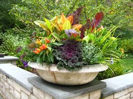 Fall Landscaping Ideas by Fall Season Flower Container Ideas Midwestern Plants