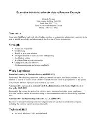 Executive Summary Resume Example Template 100 Excellent Resume Example Resume Bullet Points Examples