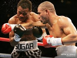 Cotto vs Mosley