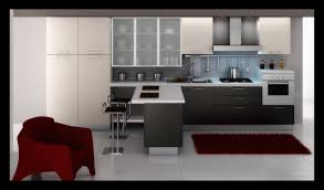 Modern European Kitchen Cabinets Modern Kitchen Cabinet Ideas Zamp Co