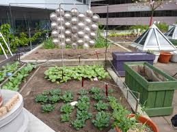 metro vancouver rooftop vegetable build your own home roof