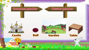 learn grade 3 english grammar noun gender youtube