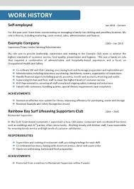 Resume Profile Section Examples by Resume Professional Profile Sample