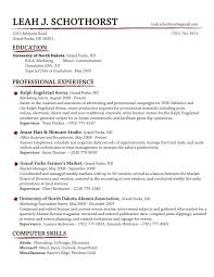Recruiter Daily Planner Template Dazzling Design Examples Resume 16 Best 25 Sample Resume Format