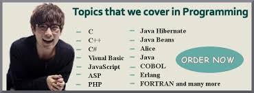 programming language help Myassignmenthelp net