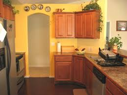 Paint Colors For Kitchen Walls With Oak Cabinets Kitchen Paint Colors With Oak Cabinets Fantastic Home Design
