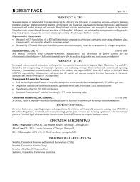 Profile Section Of Resume Examples by Download Resume Example Profile Haadyaooverbayresort Com