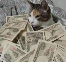 حبايبي القطط Images?q=tbn:ANd9GcS3oppj6dOaZ31EwwS0BWuWxo9EGQ3NhCoPUJWymExUyM3TELTSGQ