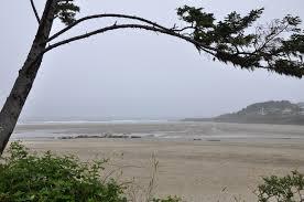 Yachats Ocean Road State Natural Site