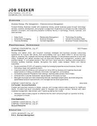 Best It Resume Sample by Company Resume Examples
