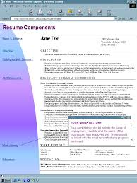 Resume Examples  Professional Educator With Area Of Expertise And Career Track As Peer Education Teacher