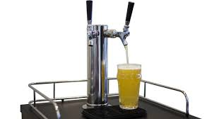 Beer Kegerator Which Is The Best Mini Kegerator For Use At Home