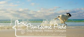 Cottages To Rent Dog Friendly by Dog Friendly Camber Sands Holiday Cottages