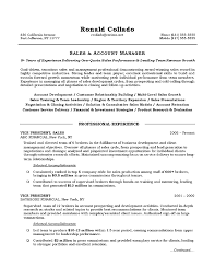 Resume Examples  Summary for Resume Example for Sales Professional     Rufoot Resumes  Esay  and Templates     Resume Examples  Summary For Resume Example For Sales Account Manager With Skills In Account Development