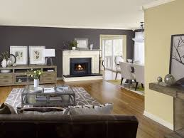 Gray Color Schemes For Kitchens by 46 Best Veterinary Clinic Color Schemes Images On Pinterest