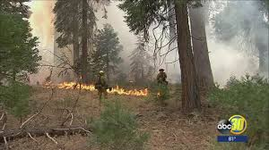 Wildfire Containment by Highway 41 Reopened Near Sugar Pine As Containment Rises On