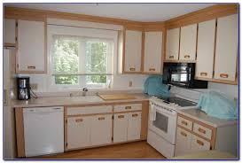 Replace Kitchen Cabinet Doors Replacing Kitchen Cabinet Doors Before And After Kitchen Set