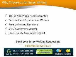 custom essay zero FAMU Online custom essay writing services australia mapa fisico de estados
