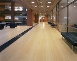 Bamboo Flooring In Kitchen Pros And Cons Bamboo Floor One Of The Best Home Design