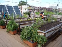 garden beautiful how to build small space area rooftop gardens