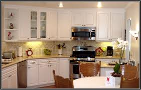 Kitchen Cabinet Colors 2014 by Inexpensive Refacing Kitchen Cabinets Pictures U2014 Decor Trends