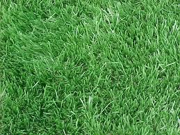 lawn care reston, lawn care great falls