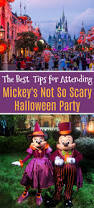 tips for attending mickey u0027s not so scary halloween party