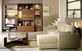 Furniture Small Living Room Living Room Top Notch Image Of Living Room Decoration With Small