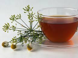 how to grow an indoor tea garden hgtv